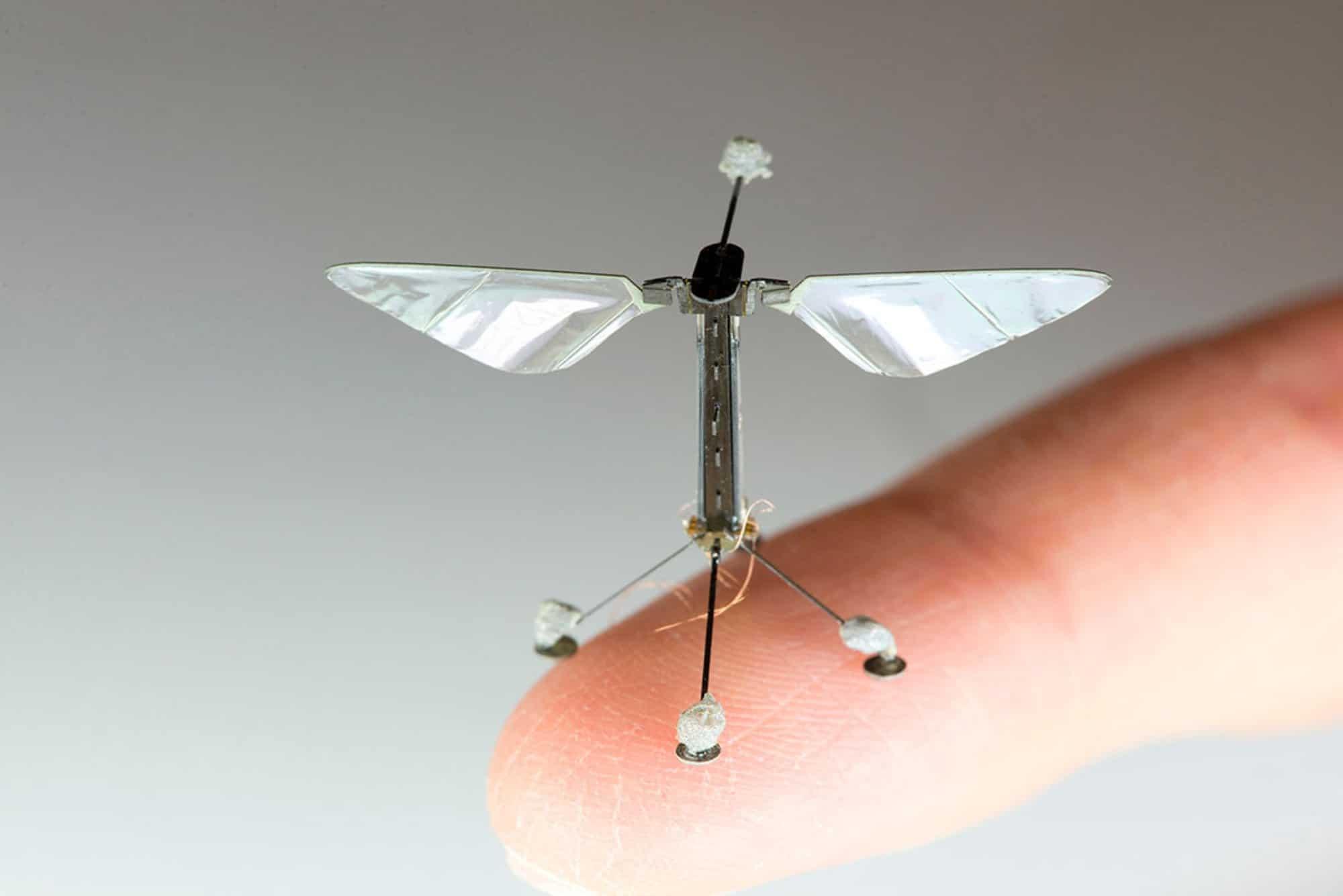 Photo of Las abejas robóticas están cada vez mas cerca.