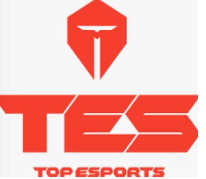 Top Esports